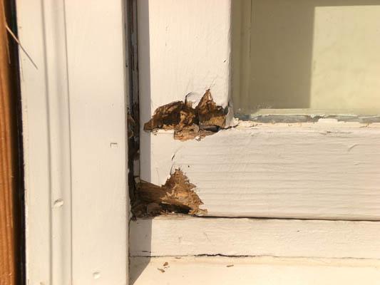 Kansas City S Wood Rot Repair